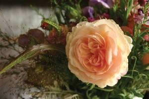 flower-blog-001=600x400=72dpi