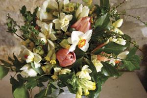 flower-farmers-year-blog-tulip-300w