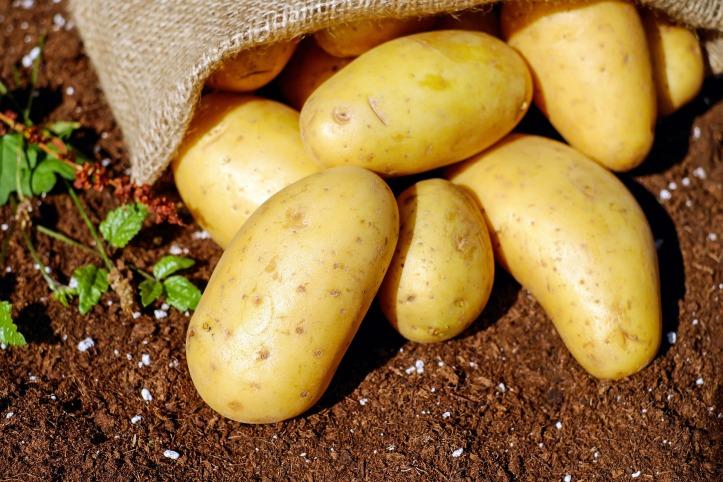 potatoes-1585075_1920