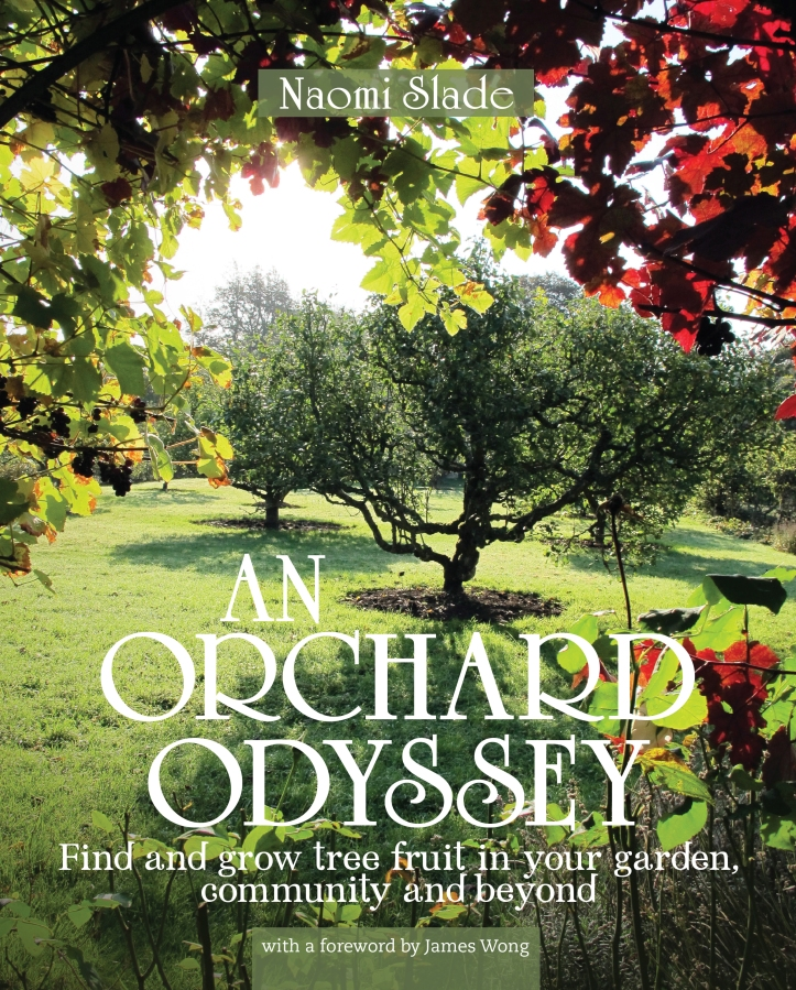 20160627=Orchard-Odyssey=ep-1-1=Cover=Candidate.indd